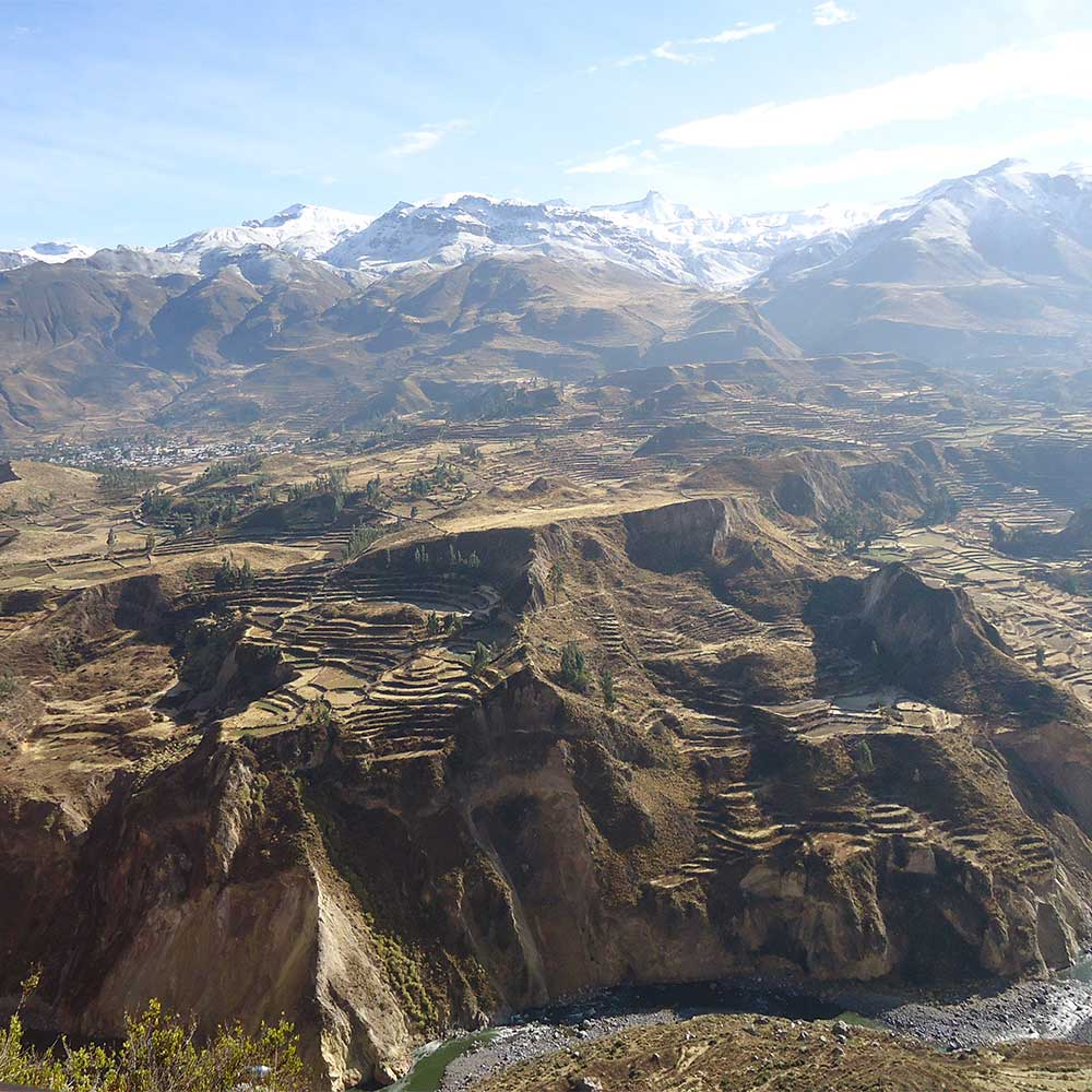 peruvian-shades-excursion-arequipa-full-day-colca-destacado