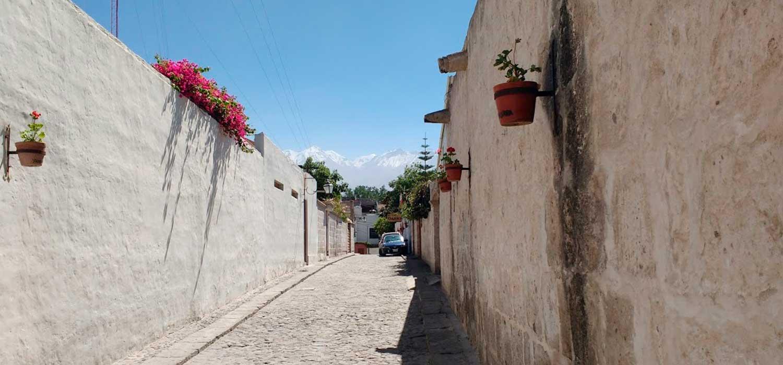 peruvian-shades-excursion-arequipa-tour-campina-arequipena-1
