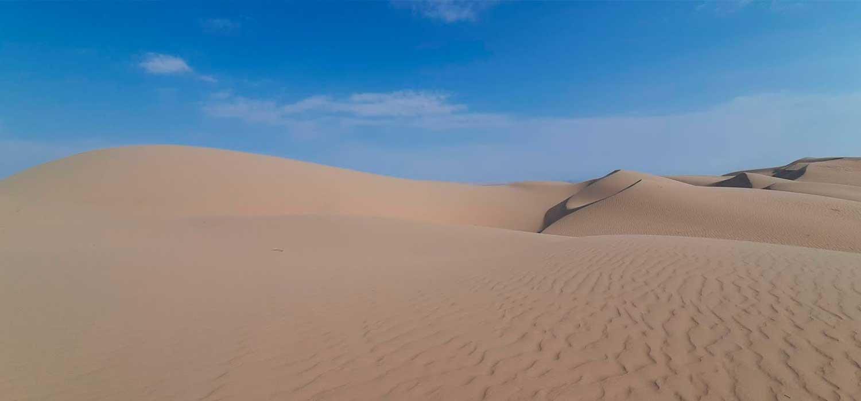 peruvian-shades-excursion-sur-chico-full-day-paracas-1