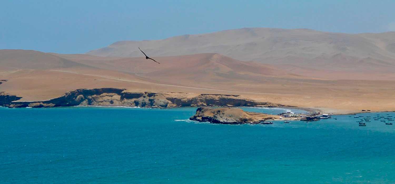 peruvian-shades-excursion-sur-chico-full-day-paracas-2