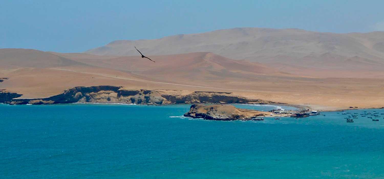 peruvian-shades-paracas-glamping-en-el-desierto-de-paracas-4